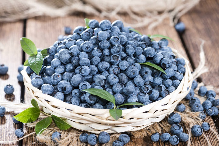 Blueberries are fruits that are good for diabetes
